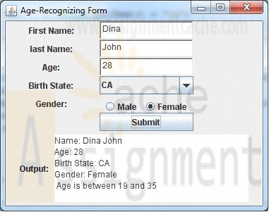 CMIS 242 Project 2 Age-Recognizing Form v2.0