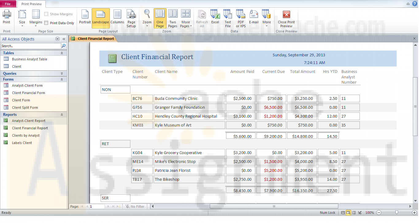 Access Chapter Reports and Forms Camashaly Design Client Financial Report