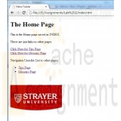 CIS 273 Lab Assignment 2 Home Page